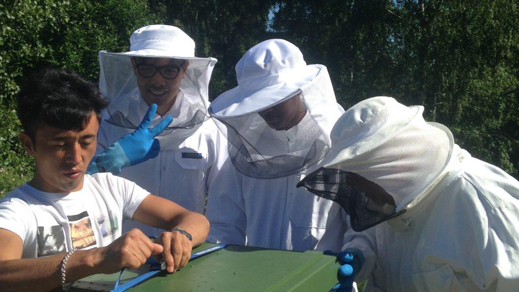 Biodling i Östra Vätterbranterna