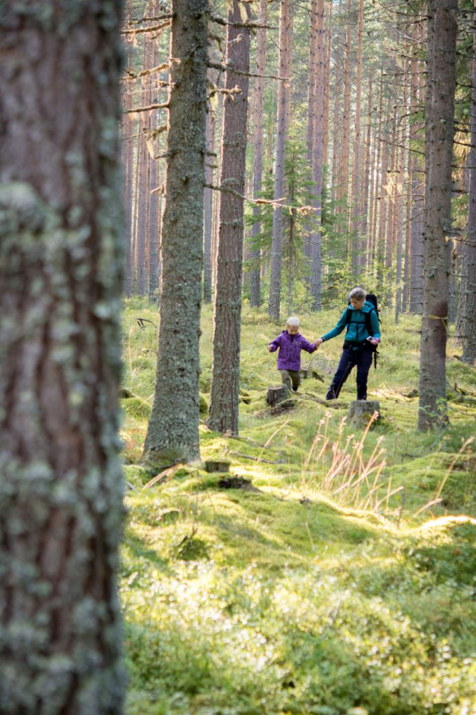 Mamma och barn i skogen